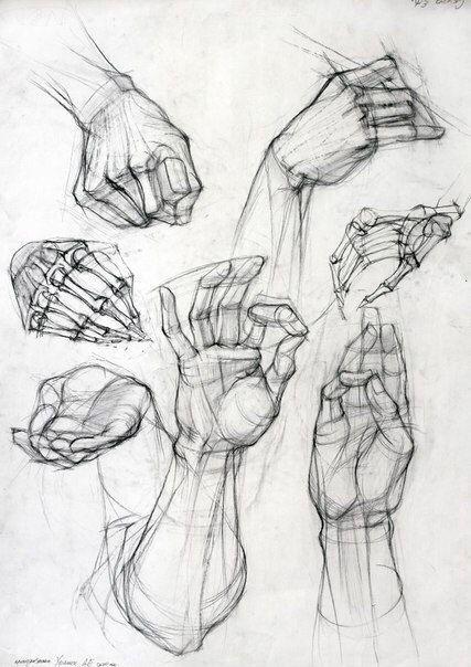 скетч анатомия