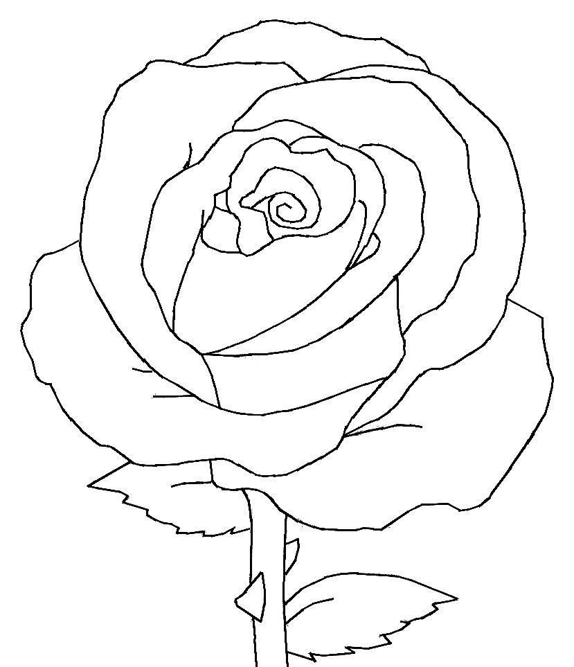 опыта, рисовать рисунки розы батарейные блоки