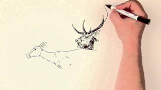 Животные на рисунке